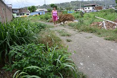 Terreno municipal está cubierto de maleza
