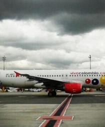 Avión aterriza de emergencia por ave atrapada en el motor