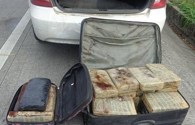 Decomisan ladrillos de marihuana en Santo Domingo
