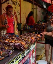 Sarta de cangrejos a seis dólares en Santo Domingo
