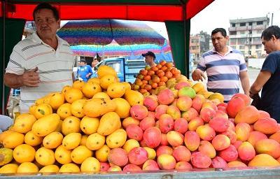 Comienza la época de mangos en Santo Domingo de los Tsáchilas