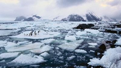 El hielo marino de la Antártida es más grueso de lo que se creía, según estudio