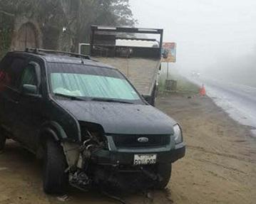 Auto choca contra un toro en el sector El Aromo