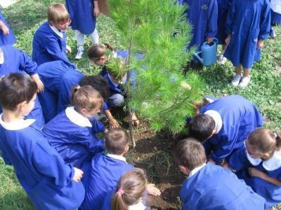 Niños plantean propuestas contra el cambio climático en la MiniCOP20
