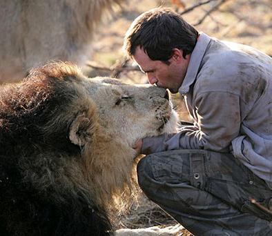 kevin come, duerme y juega fútbol con leones