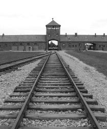 Auschwitz, 70 años del fin del horror nazi