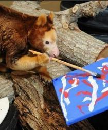 El Zoo de Miami inaugura una muestra de pinturas hechas por animales