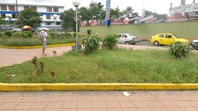 Parque ubicado frente a la Terminal Terrestre es zona de fumones, según ciudadanos