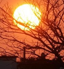 Los efectos de la radiación solar, una amenaza que puede ser controlada