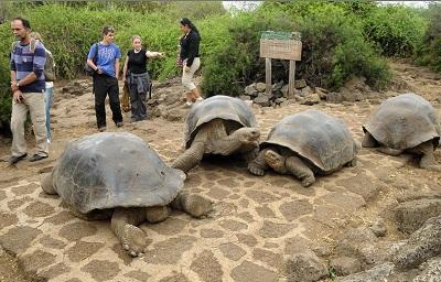 El turismo en Galápagos creció un 6 por ciento en 2014