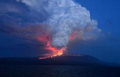 El volcán Wolf de la Isla Isabela hizo erupción esta madrugada