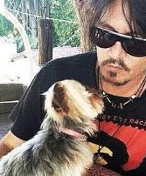 Johnny Deep podría ser sentenciado a diez años de cárcel por culpa de sus perros