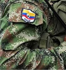 Un segundo guerrillero de la delegación de paz de las FARC murió en bombardeo