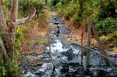 FARC obligan a derramar 200.000 galones de crudo