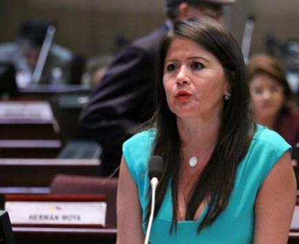 Rodríguez delegada a parlamEricas