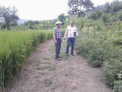 En la agricultura hay que trabajar en dos escenarios, dice concejal