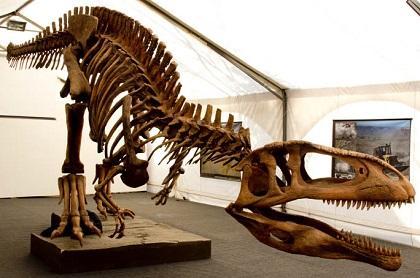 La inestabilidad climática impidió la expansión de dinosaurios en trópicos