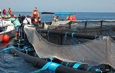 La maricultura crece en Manabí