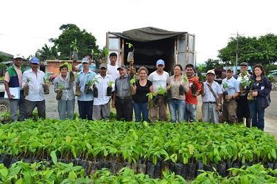 Doce familias reciben plantas en Santa María del Toachi