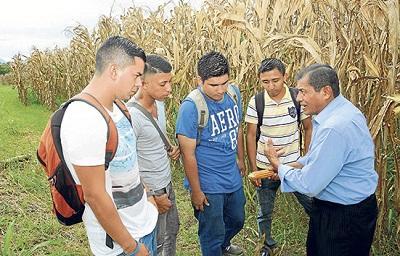 Hijos de agricultores, sin interés en el campo