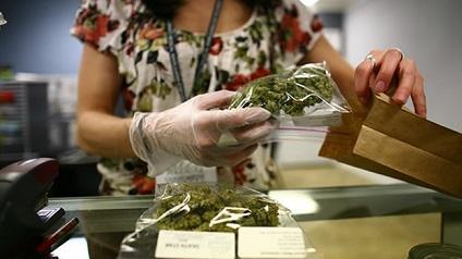 Un 65,2 % aprueba uso terapéutico de marihuana en América Latina