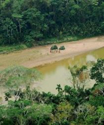 Indígenas aislados de Ecuador, Perú y Paraguay, los más amenazados de América