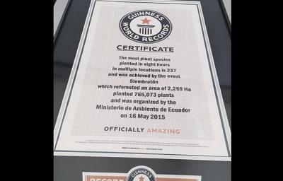 Ecuador recibe el certificado de récord Guinness por reforestación simultánea