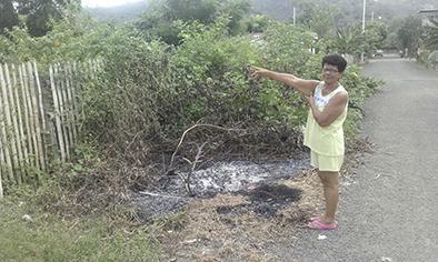 Piden limpieza de terrenos en ciudadela san jorge