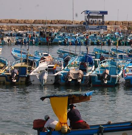 Pescadores preocupados por la temperatura del mar