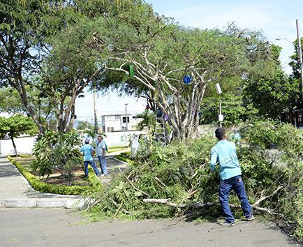 Realizan limpieza del parque en la ciudadela El Maestro