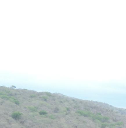 Tráiler cargado con cilindros de gas se vuelca en Jipijapa