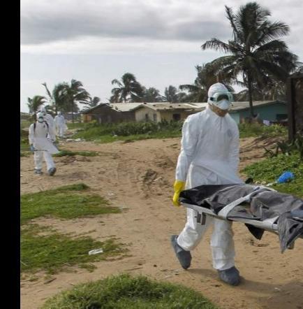 La OMS declara el fin del brote de ébola en África occidental