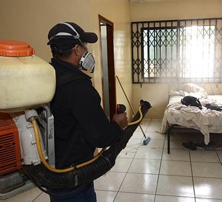 """""""Atacan"""" con todo al mosquito del zika"""