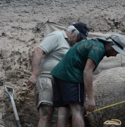 Dos veterinarios hallan un gliptodonte de 10.000 años al norte de Uruguay