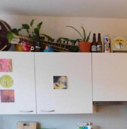 ¿Tienes la habilidad suficiente para encontrar a un gato en esta cocina?