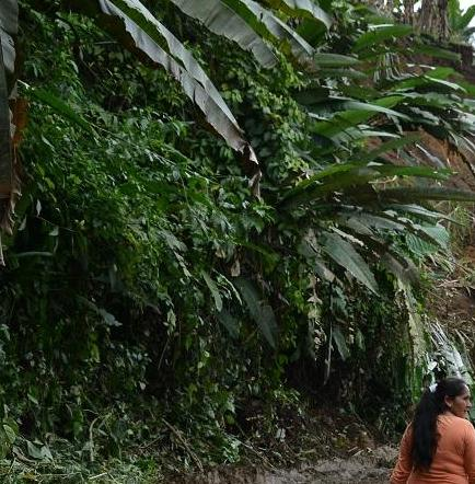 Se registró un nuevo deslizamiento vía El Paraíso-Los Libres de Santo Domingo