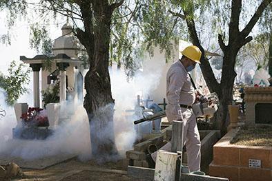 El zika se detecta  en orina y saliva