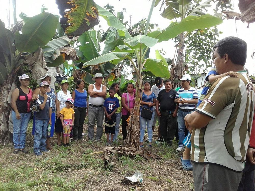 Moradores del barrio La Loma alistan huertos familiares