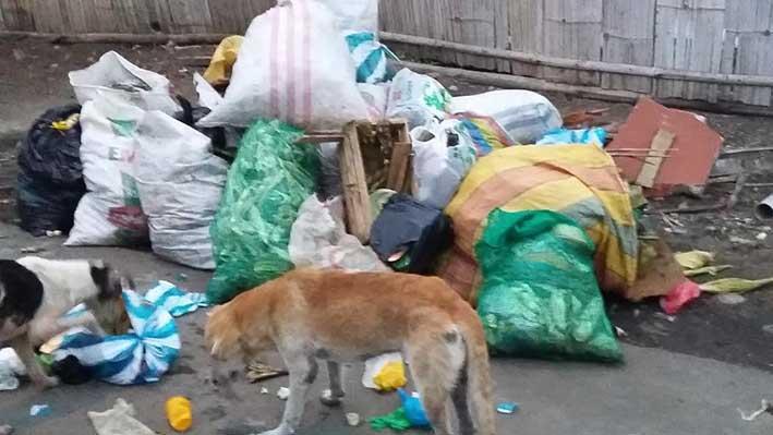Se quejan por basura en poste