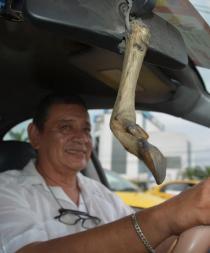Los amuletos de los taxistas