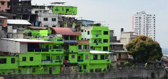 Jaime Nebot 'perdona' multa a personas que pintaron sus casas de color verde en Guayaquil