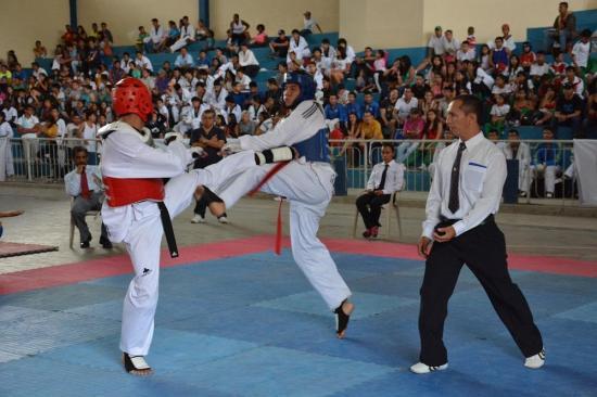 Taekwondo cuenta con nueva directiva de