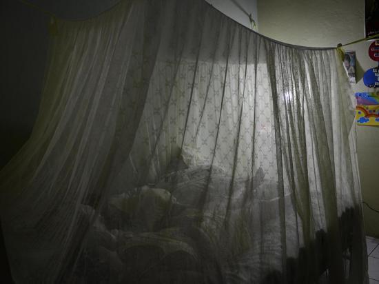 Disminuyen casos de chikungunya en  comparación al 2015