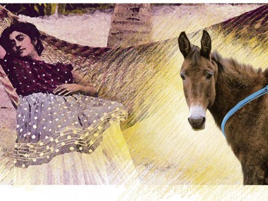 'Una niña se hizo mula por desobediente'