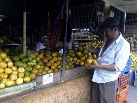 La naranja y mandarina  no se han producido como en otros tiempos