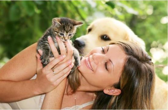 ¿Eres alérgico a perros o gatos? Te damos consejos para reducir los síntomas