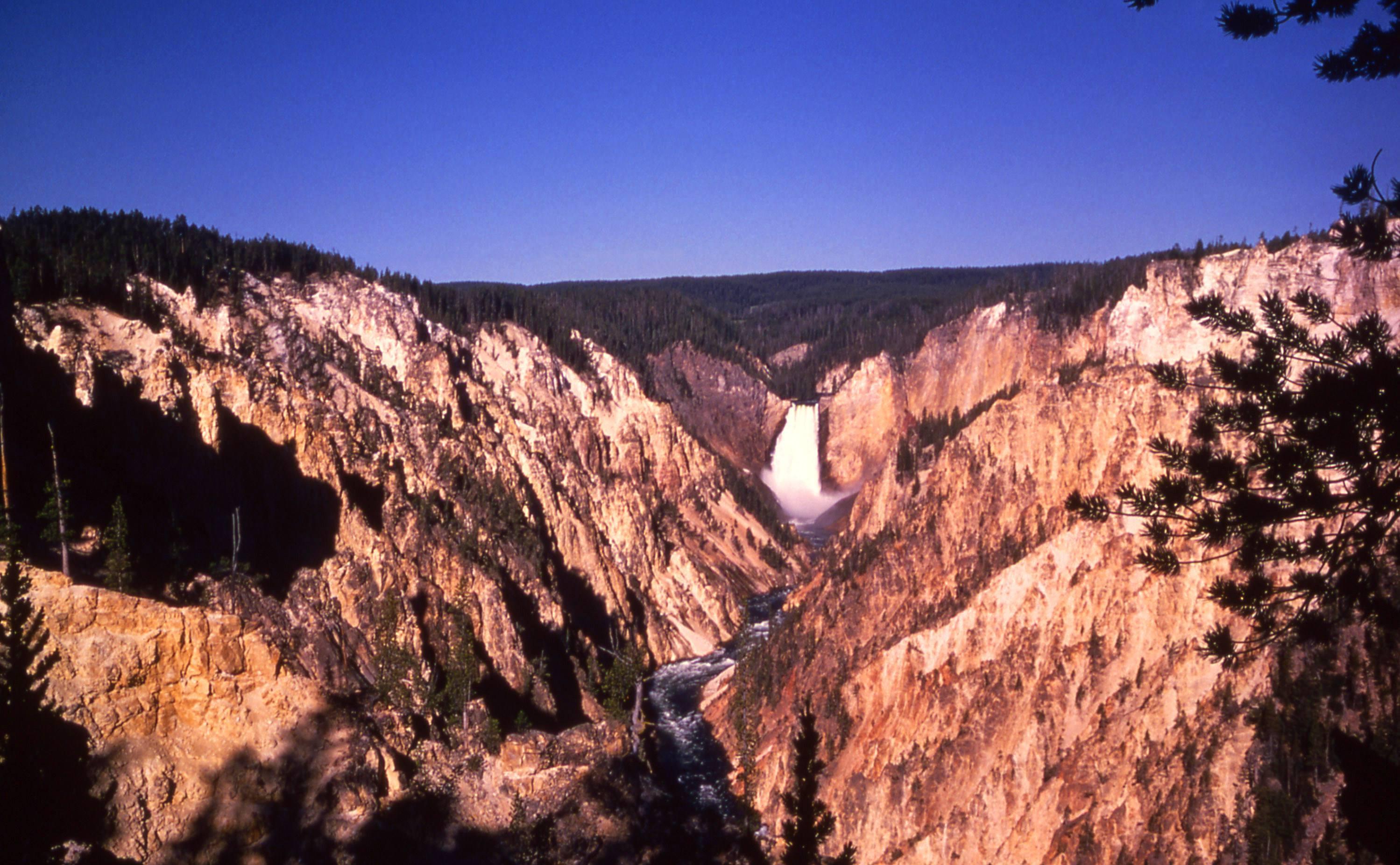 Ecuatoriana muere al caer al Gran Cañón del Parque Nacional Yellowstone