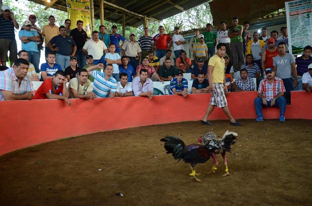 Fiesta en Puerto Limón