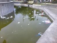 Pileta del parque se llena de basura