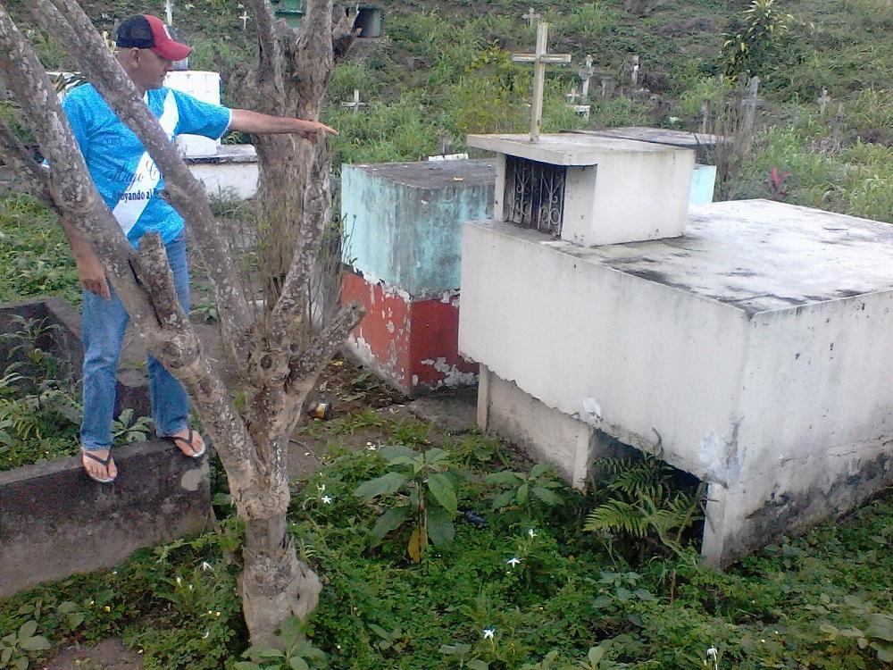 Abejas invaden cementerio